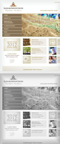 Lelienfontein - Vine Growers  1